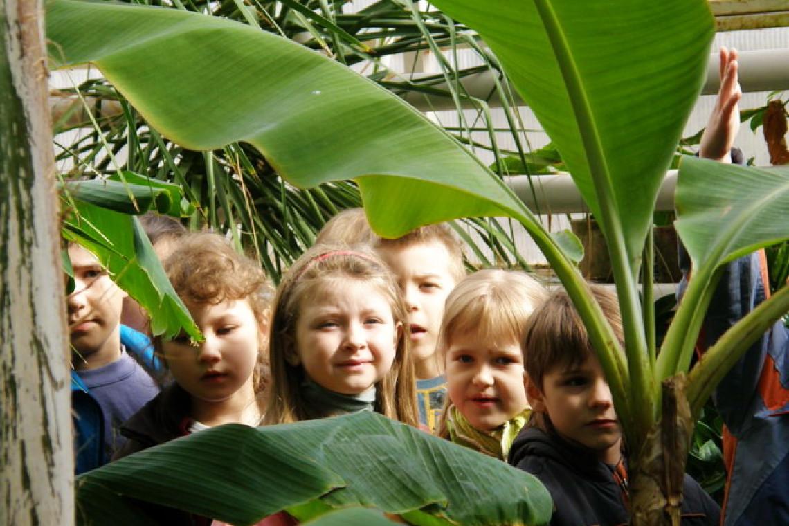 Ботанический сад Ставрополь