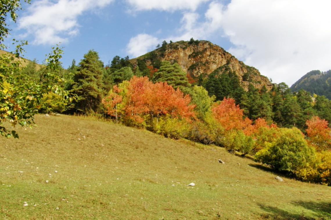 долина реки Джамагат