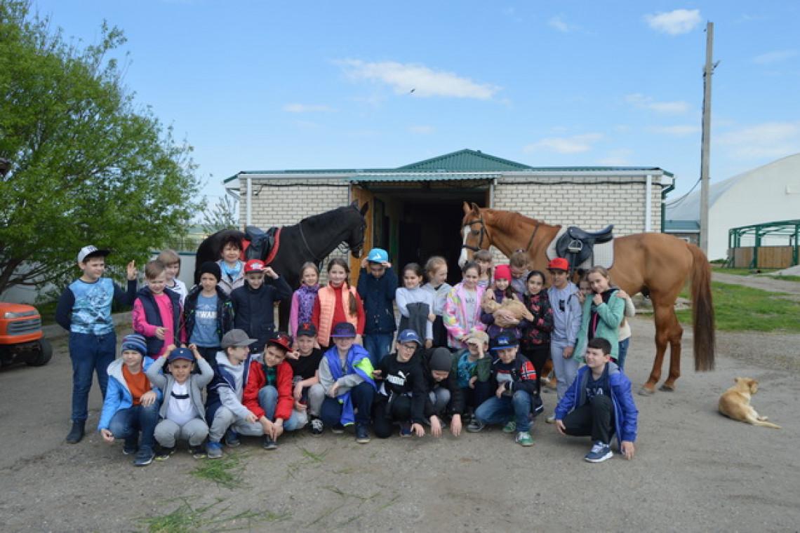 конный клуб экскурсия